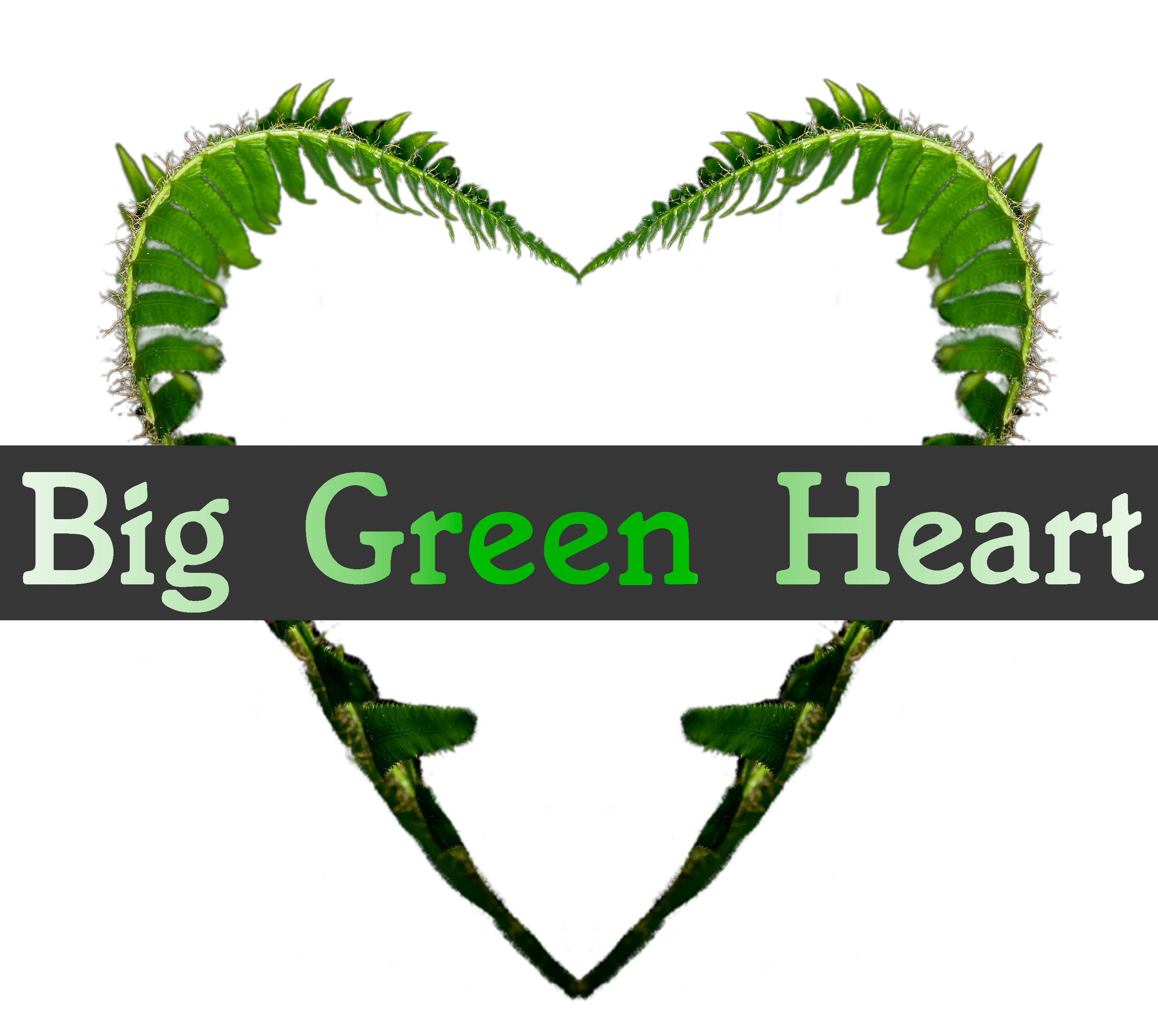 Big Green Heart
